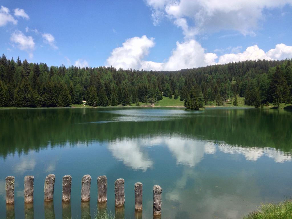 Trekking zum Lago di Tret:<br /><b>Eine friedliche Oase in den Wäldern des oberen Val di Non</b>